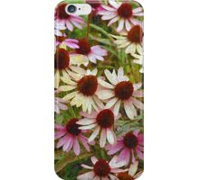 Echinacea floral illustration phone case iPhone Case/Skin