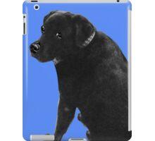 Soldier (Pet Portrait) iPad Case/Skin