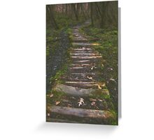 Spring Wood Path Greeting Card
