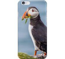 Puffin Bearing Gifts iPhone Case/Skin