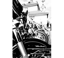 Born to be Wild Photographic Print