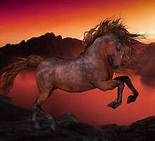 A Horse In The Sunset by Gatterwe