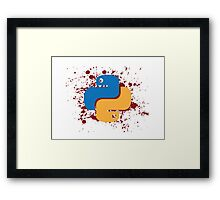 I Know Python. How to Meet Ladies. Gift for Programmers Framed Print