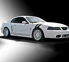 2004 Shelby Mustang III by DaveKoontz
