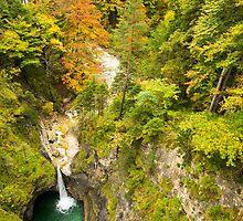 Neuschwanstein Waterfall by MichaelJP