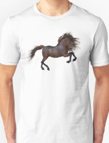 A Horse In The Sunset T-Shirt