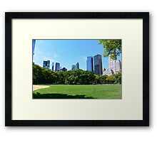 Central Park New-York Framed Print