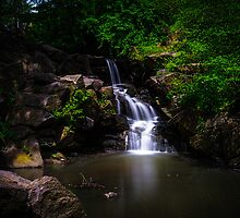 "A ""North Woods"" Waterfall In Spring by Chris Lord"