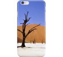 Desert Lanscape iPhone Case/Skin