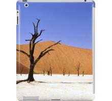 Desert Lanscape iPad Case/Skin