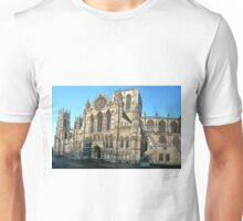 Minster in the wide Unisex T-Shirt