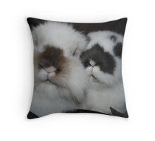 Bramble & Berry  Throw Pillow