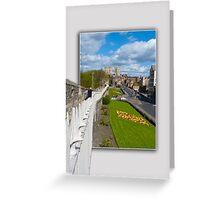 York walls minster Greeting Card