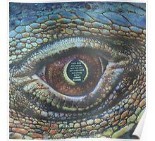 Albert Einstein snake eye Poster