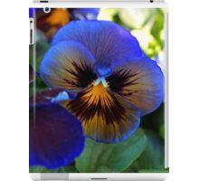 Blue Delta iPad Case/Skin