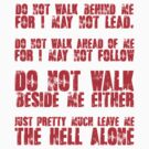 Do not walk behind me, for I may not lead do not walk ahead of me for I may not follow by SlubberBub