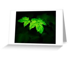 Dark Nature: Glowing Leaves Greeting Card