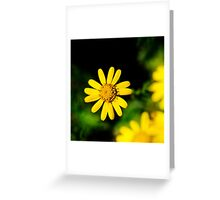 Dark Nature: Yellow Flower Greeting Card