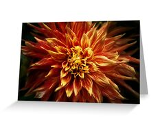 Dark Nature: Fiery Flower Greeting Card