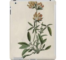 Wayside and woodland blossoms a pocket guide to British wild flowers for the country rambler  by Edward Step 1895 052 Kidney Vetch iPad Case/Skin