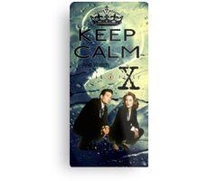 X Files 2 Metal Print