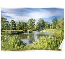 Rural Lake Poster