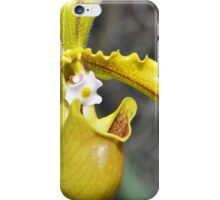 Intimate Orchid 5 - Sharon Cummings iPhone Case/Skin