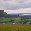 Benevenagh Mountain Magilligan by mikequigley