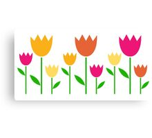 Fresh cute colorful Tulips isolated on white Canvas Print