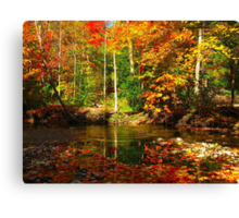 In the still of the forest, a falling leaf can be heard Canvas Print