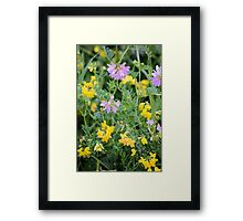 Partridge Pea Bouquet Framed Print