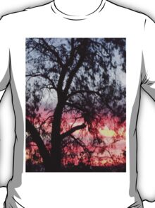 Sun setting behind desolate trees T-Shirt