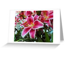 Lily In The Sunken Garden Greeting Card