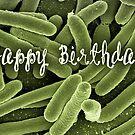Happy Birthday - Microbiologist by garigots