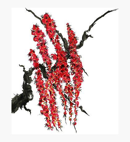 A branch of a blossoming cherry. Red flowers of sakura Photographic Print