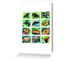 Dynamic Butterflies Greeting Card