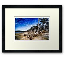On the shore of the Inlet Framed Print