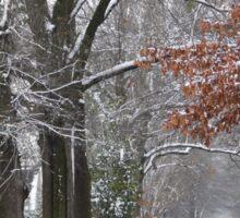 Winter Wonderland...sort of.. Sticker
