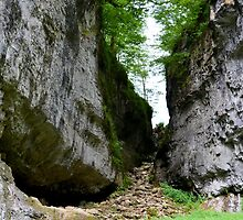 Trow Gill Ravine by mikebov