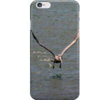 Pelican in Flight iPhone Case/Skin