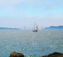Sailing on the Bay by David Denny