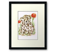 Young  Cub  Leopard Framed Print
