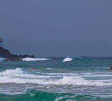 Panama. Bocas del Toro. Red Frog Beach. Waves. Sticker