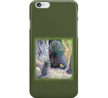 Boulders and Desert Spoons * iPhone Case/Skin