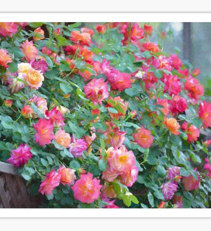 Rose 360 Sticker