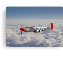 P51 Mustang Gallery - No4 Canvas Print