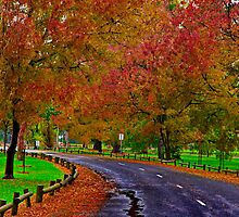 """""""Autumn In Eastern Park"""" by Phil Thomson IPA"""