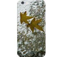 Symbols of Autumn  iPhone Case/Skin