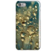 Firework Dandy in Blue iPhone Case/Skin