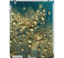 Firework Dandy in Blue iPad Case/Skin